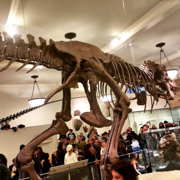 American Museum of Natural History dinosaur